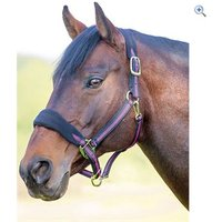 Shires Topaz Fleece Headcollar - Size: PONY - Colour: Black / Raspberry
