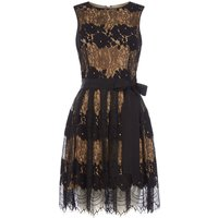 Tahari ASL Fit & Flare Lace Dress with Nude Under Layer, Multi-Coloured