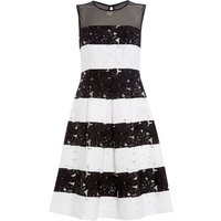Ariella Lace stripe fit and flare dress, Black/White