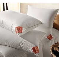 Goose Amp Duck Feather And Down Pillows Furnishings