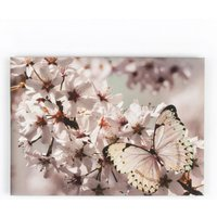 Graham & Brown Butterfly Branch Glitter Canvas, Brown - Butterfly Gifts