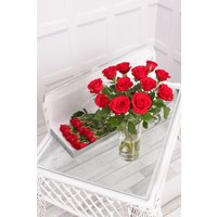 Floric 12 Red Letterbox Roses, Red