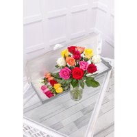Floric 12 Colourful Letterbox Roses