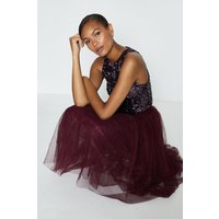Coast Tulle Short Skirt, Aubergine