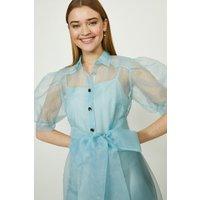 Coast Organza Puff Sleeve Dress, Pale Blue