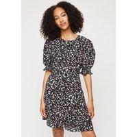 Women's Tall Black Ditsy Floral Frill Hen Mini Dress - 16