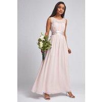 Showcase Petite Blush Natalie Maxi Dress