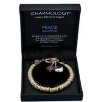 Charmology Peace Amethyst Ring Bracelet