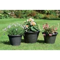 Set Of Three Wicker-Effect Planters