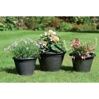 Set Of Three Wicker-Effect Planters