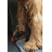 RAC In-car Harness Seatbelt Connector Strap
