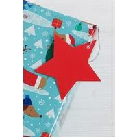 10 Red Star Gift Tags