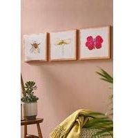 Beautiful Bugs Set of 3 Canvas