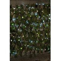 Trellis With Solar Lights