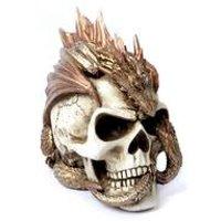 Dragon Keepers Skull