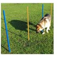Pet Agility Slalom Poles 5 Set