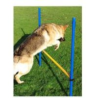 Pet Agility Hurdle Jump