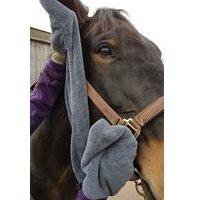 Henry Wag Equine Microfibre Glove Towel