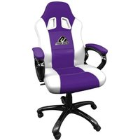 Subsonic E-Sport Pro Gaming Computer Chair
