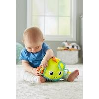 Fisher Price Sensory Fun Fish