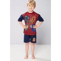 Older Boys Harry Potter Shortie Pyjamas