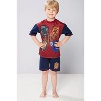 Older Boys Harry Potter Shortie Pyjamas