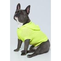 Neon Yellow Dog Hooded Jumper