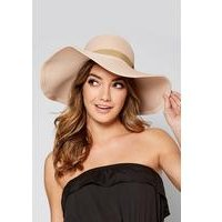 Straw Hat with Metallic Feather