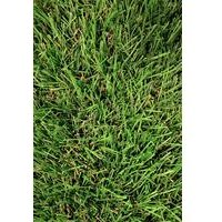 Fylde 30mm Artificial Grass - 4m Wide