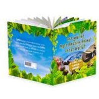 Most Amazing Animal Book