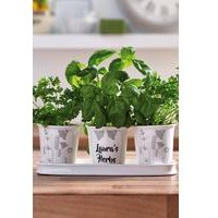 Personalised Table Top Planter