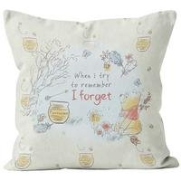 Personalised Winnie the Pooh I Forget Cushion