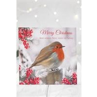 Personalised Robin Cards