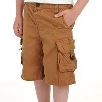 Regatta Boys Towson Shorts, Brown