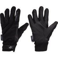 Sealskinz All Season Glove with Leather Palm, Black