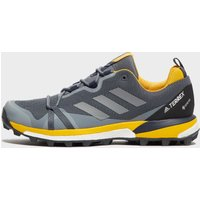 Adidas Men's Terrex Skychaser GORE-TEX Shoes, Grey