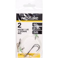 Westlake 2 Hook 1up 1down Rig 3/0  Multi Coloured