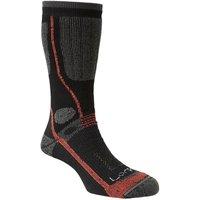 LORPEN Men's T3 All Season Trekker Socks, NEUTRAL-DARK/TREKKER