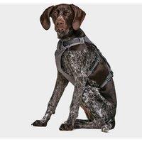 Ruffwear Flagline Dog Harness, Grey
