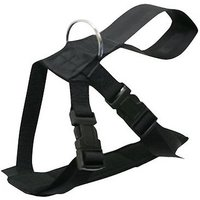 BOYZ TOYS Dog Safety Harness (Large)