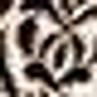 Eve Glitter Velvet Flocked Long Sleeve Playsuit