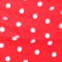 Plus Saskia Eyelet Polka Dot Frill Top