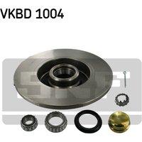 SKF - Brake Disc (Set)