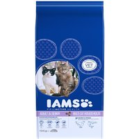 IAMS Adult Multicat Chicken and Salmon