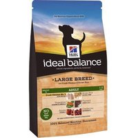 Hills Ideal Balance Canine Adult Large Breed with Fresh Chicken and Brown Rice