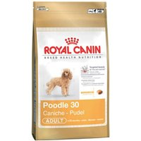 Royal Canin Canine Adult Poodle
