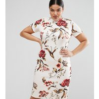 ASOS CurveASOS CURVE Floral Print T-Shirt Bodycon Dress - Multi