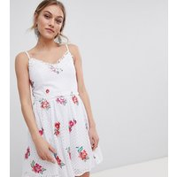 Little Mistress Petite Full Prom Skater Dress In Rose Embroidery - Cream multi