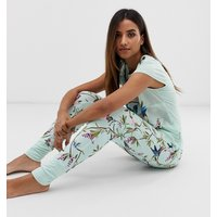B By Ted Baker Highgrove Bird Print Jersey Jogger In Mint