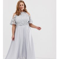Coast Plus Lyndsey lace maxi dress